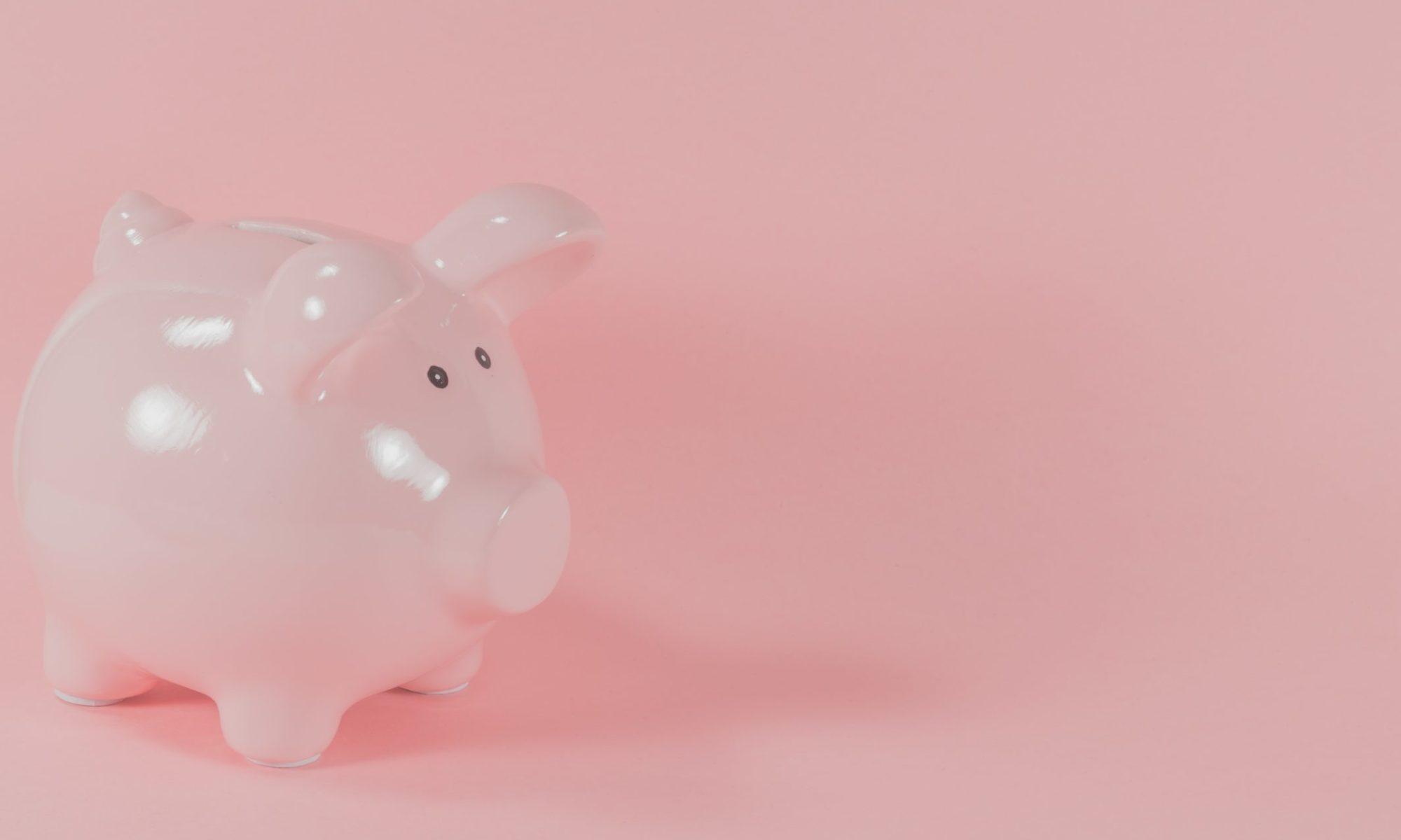 pink ceramic pig coin bank